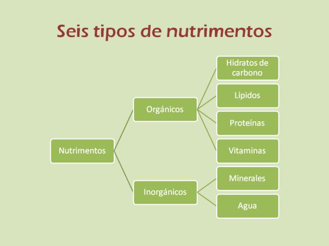 diapositiva de los nutrimentos