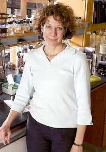 """Bonnie L. Bassler. Una de las cosas que ha descubierto es que, además de poseer un sistema de comunicación bioquímica propia de cada especie, las bacterias comparten un sistema de comunicación más general, lo que quiere de diferentes especies y hasta diferentes géneros de bacterias se pueden comunicar con un lenguaje químico universal, el """"esperanto bacteriano"""", como ella lo llama. Foto: Princeton Weekly Bulletin."""