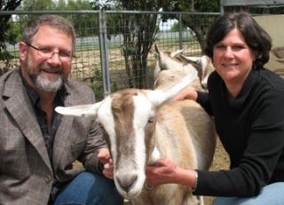 Cabra transgénica con sus creadores